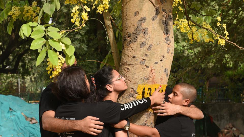 Delhi High Court on Tree Cutting