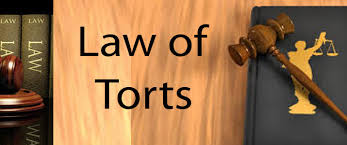 INTRODUCTION TO TORTS: Our Legal World